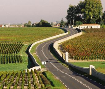 La route des vins du Médoc