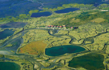 L'île aux oiseaux sur le Bassin d'Arcachon - SIBA/Brigitte Ruiz