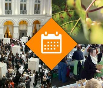 Que faire ce Week-end 12 et 13 Déc. 2015 en Gironde