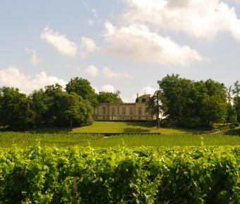 vue sur les vignes d'un chateau de Saint-Emilion - ADT Gironde Tourisme/Yannick Serrano