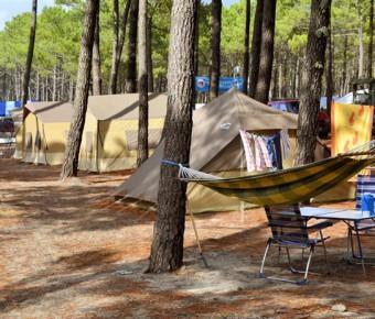 Box Campings