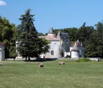 Chateau-de-La-Brede-1-1
