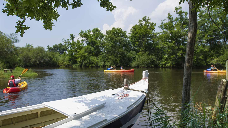 Canöe Kayak sur la Leyre @ Gironde Tourisme - JB Nadeau