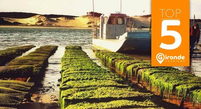 Top5-noel - © Gironde Tourisme