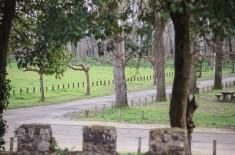 Parc au pied des remparts - Saint-Macaire ©D. Remazeilles (Gironde Tourisme)