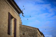 Place du Mercadiou - Saint-Macaire ©D. Remazeilles (Gironde Tourisme)
