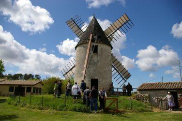Les moulins à vent de Gironde