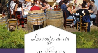 Rendez-vous vendanges en haute Gironde