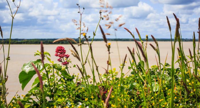 Estuaire de la Gironde © Gironde Tourisme D.Remazeilles