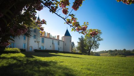 Les illustres en Sud Gironde