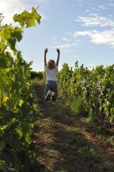 Le Fascinant Week-end à Bordeaux