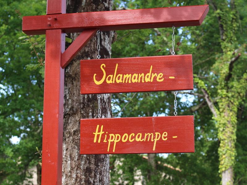 Chambres d'hôtes Salamandre et Hippocampe