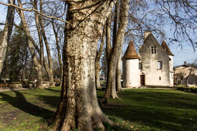 Parc de Montgaillard