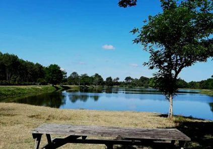 Pêche à l'étang de la Levade