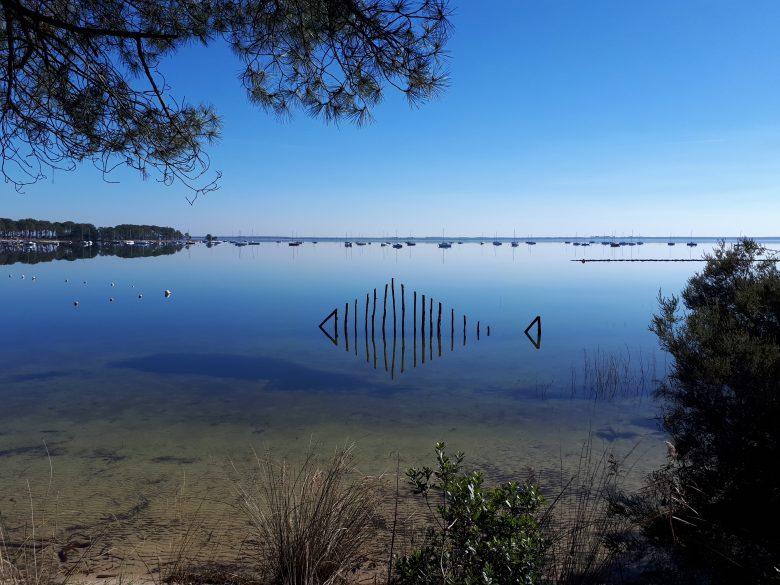 8.reflet dans l'eau