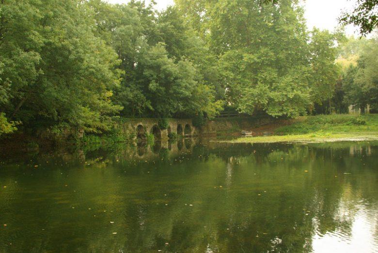800X600_Nature-rivière-Les Peintures (Sablons)-CCordonatto
