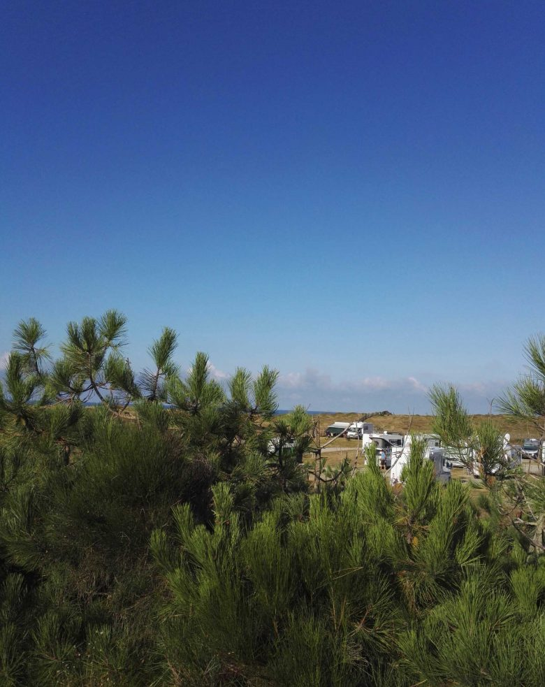 Aire camping-cars Montalivet3