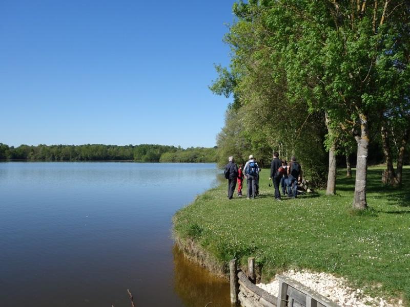 Bazas – sortie lac de la Prade