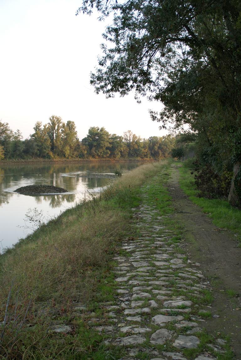 Bord de Garonne à Caudrot