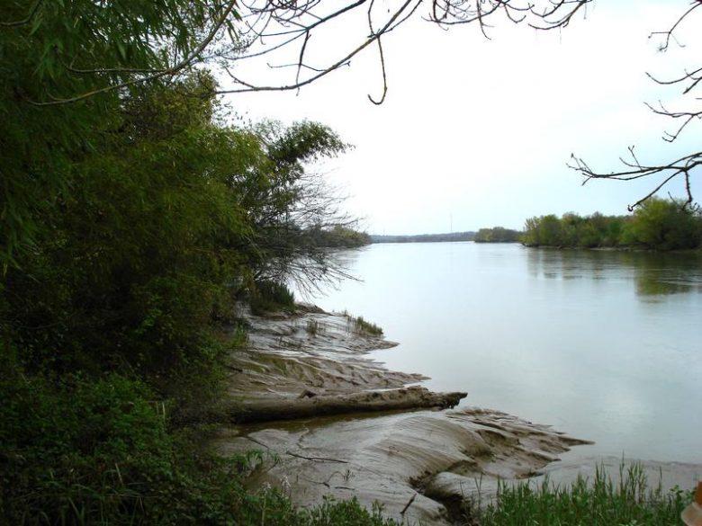 Bords vaseux de Garonne