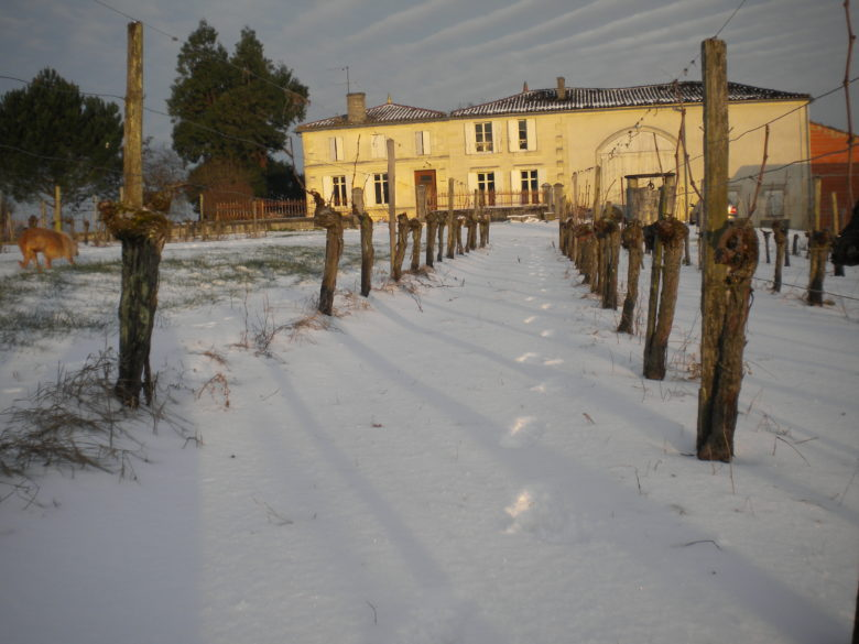 Bourdieu de l'Hermitage