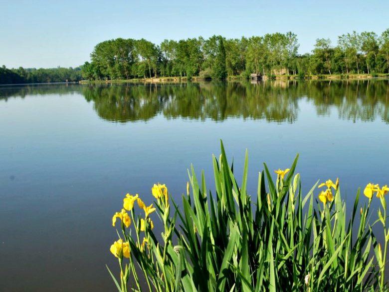 Bazas – Lac de la Prade