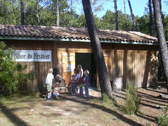 Cabane du Résinier