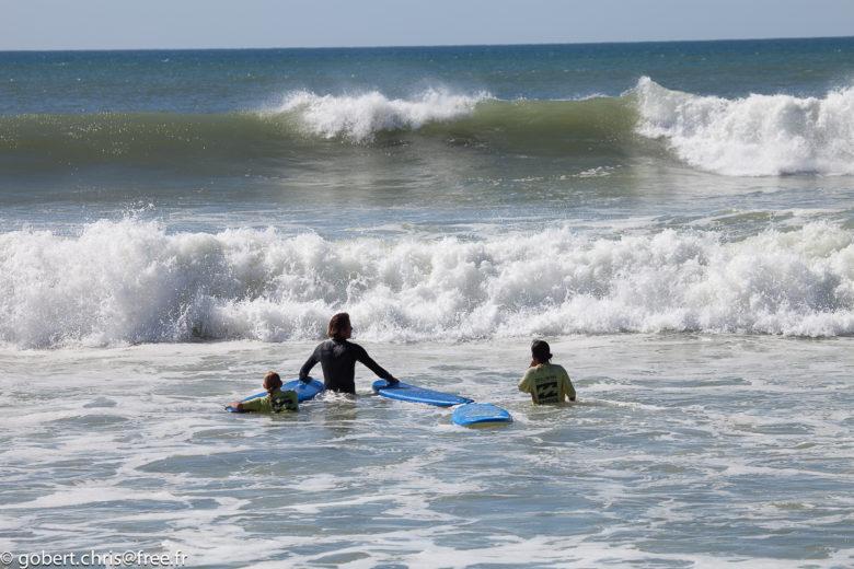 California Surf School