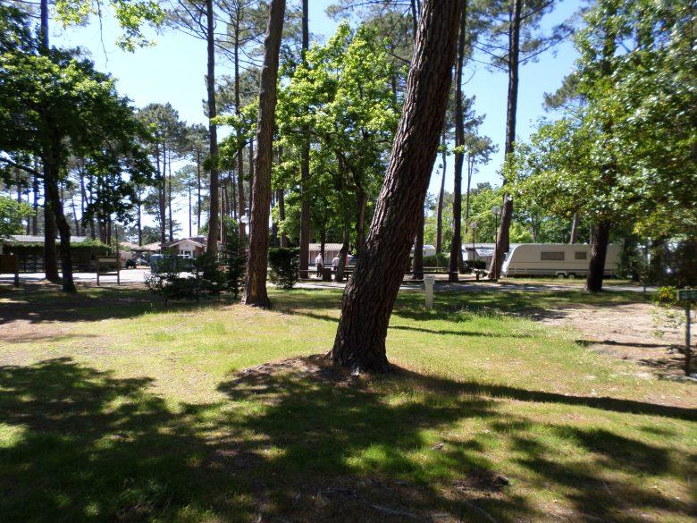 Camping_Les_Pastourelles (12)