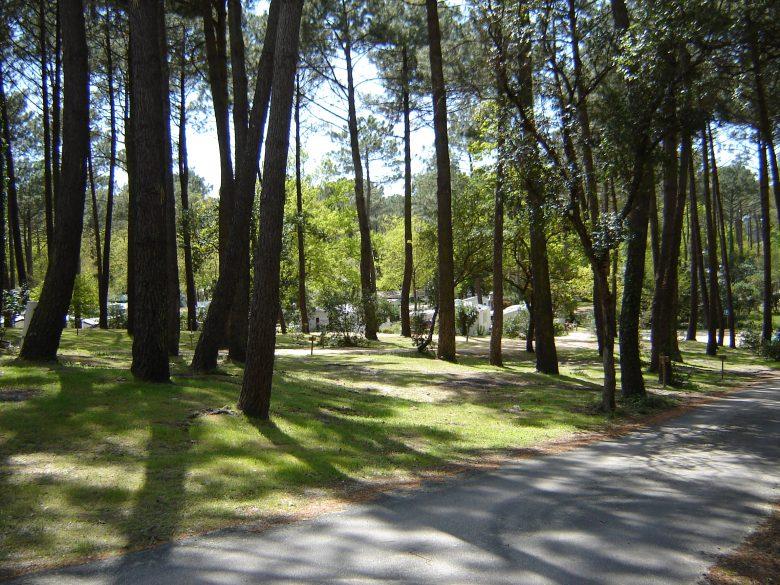 Camping_Les_Pastourelles (4)