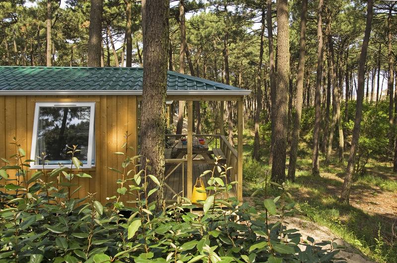 Camping Petit nice 5