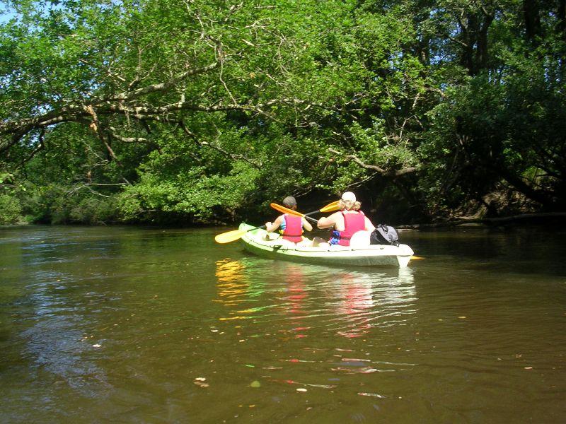 Canoë Kayak sur l'Eyre