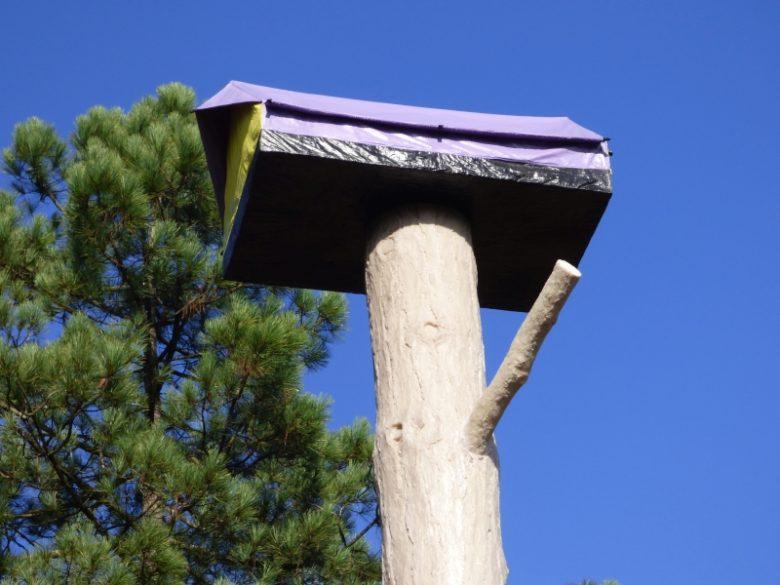 Captieux – le Pavillon – Forêt d'art contemporain (3)