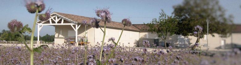 Moulis – Château Biston Brillette