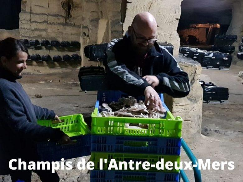 Champis-de-l-Antre-deux-Mers–1-