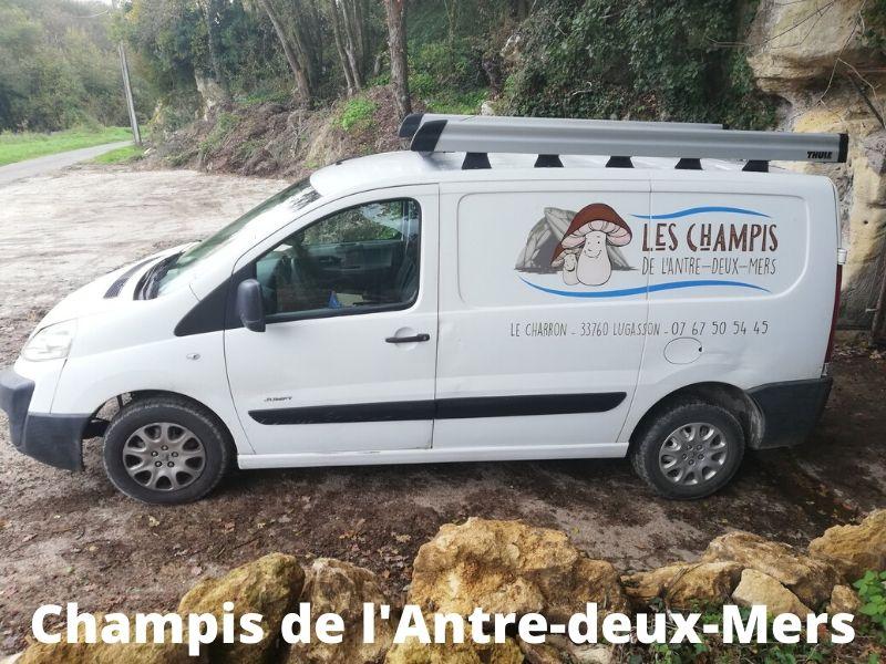 Champis-de-l-Antre-deux-Mers–6-