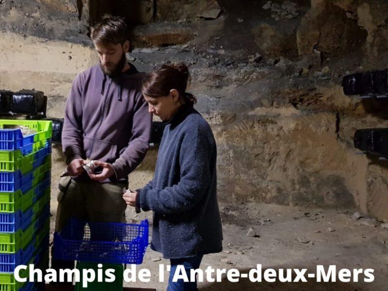 Champis-de-l-Antre-deux-Mers–7-