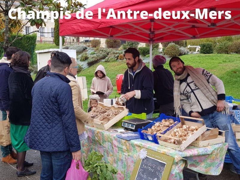 Champis-de-l-Antre-deux-Mers