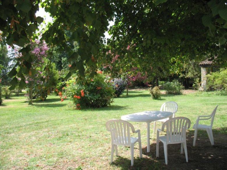 Chardon fleuri_gite_jardin_teuillac_800x600