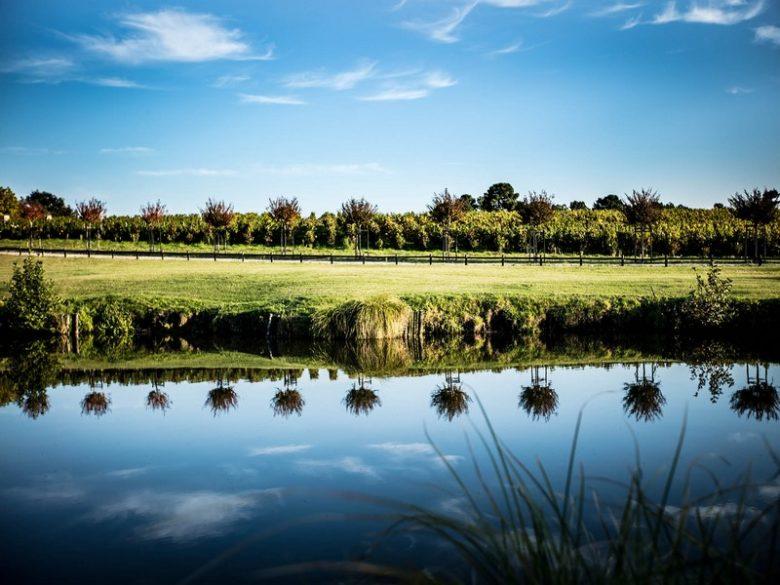 Château Angludet étang