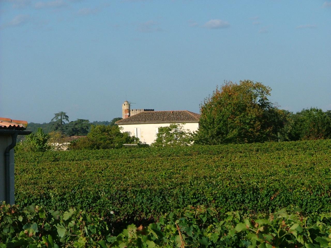Château Beauregard Ducasse – MAZÈRES – Sud-Gironde