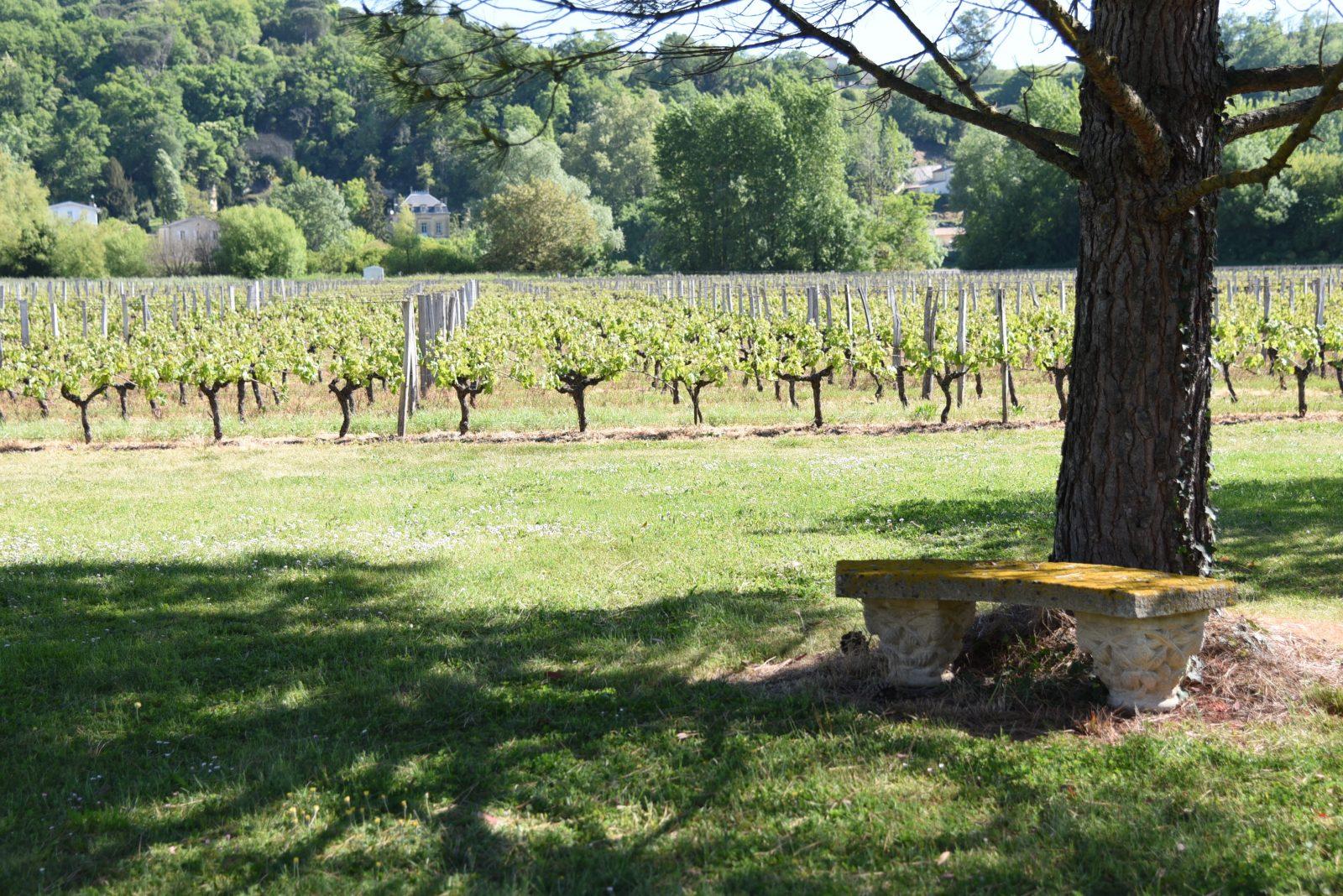 Destination Garonne, Château Cheret Pîtres, Portets