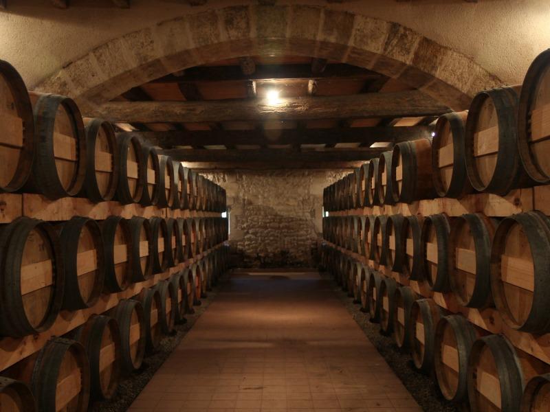 Château Eyquem vignoble côtes de bourg chais Bayon 800×600