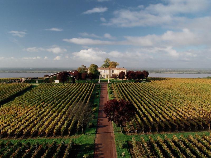 Château Eyquem vin cotes de bourg Bayon 800×600