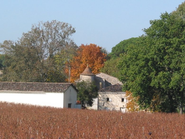 Château Font-Vidal – Vue de côté