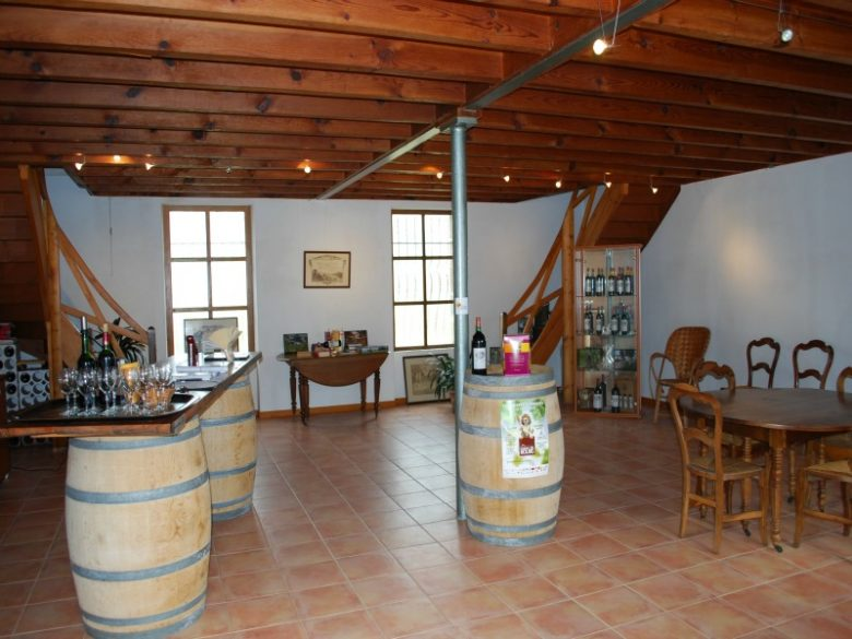 Château Lamothe vin Lansac 800×600