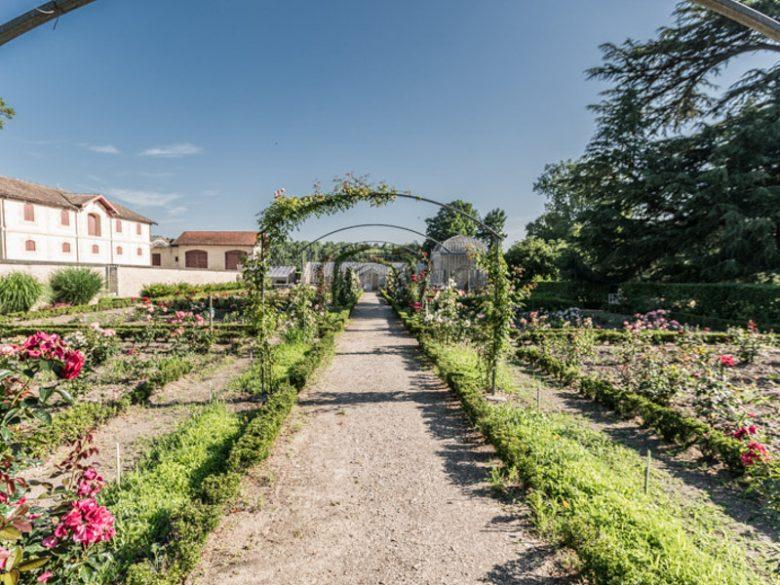 Château-Lanessan10