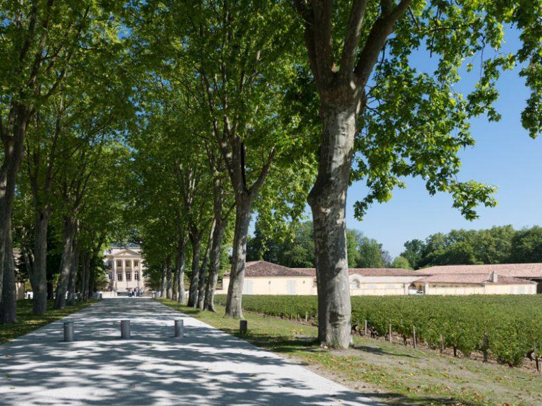 Château-Margaux3