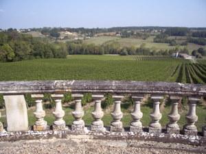 Château Parenchère – Vue sur le vignoble