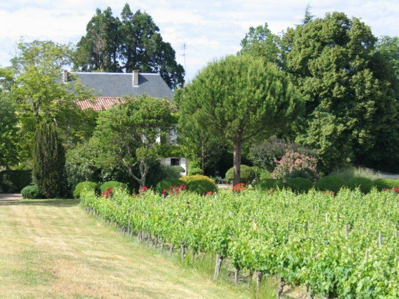 Château Peymelon